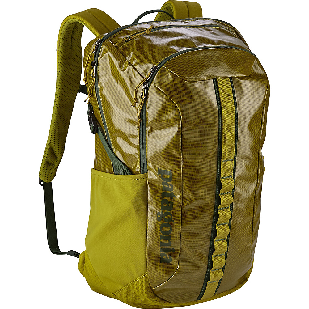 Patagonia Black Hole Pack 30L Golden Jungle - Patagonia Laptop Backpacks - Backpacks, Laptop Backpacks