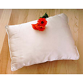 Silk Filled Travel Pillow Natural White