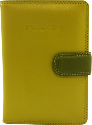 Visconti RB 75 Multi Colored Passport Holder Cover Green - Visconti Travel Wallets