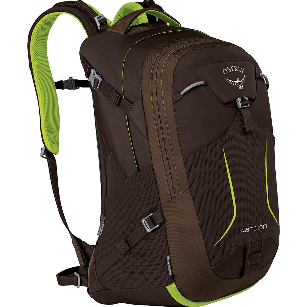Osprey Pandion 30L Laptop Backpack Komodo Green - Osprey Laptop Backpacks - Backpacks, Laptop Backpacks