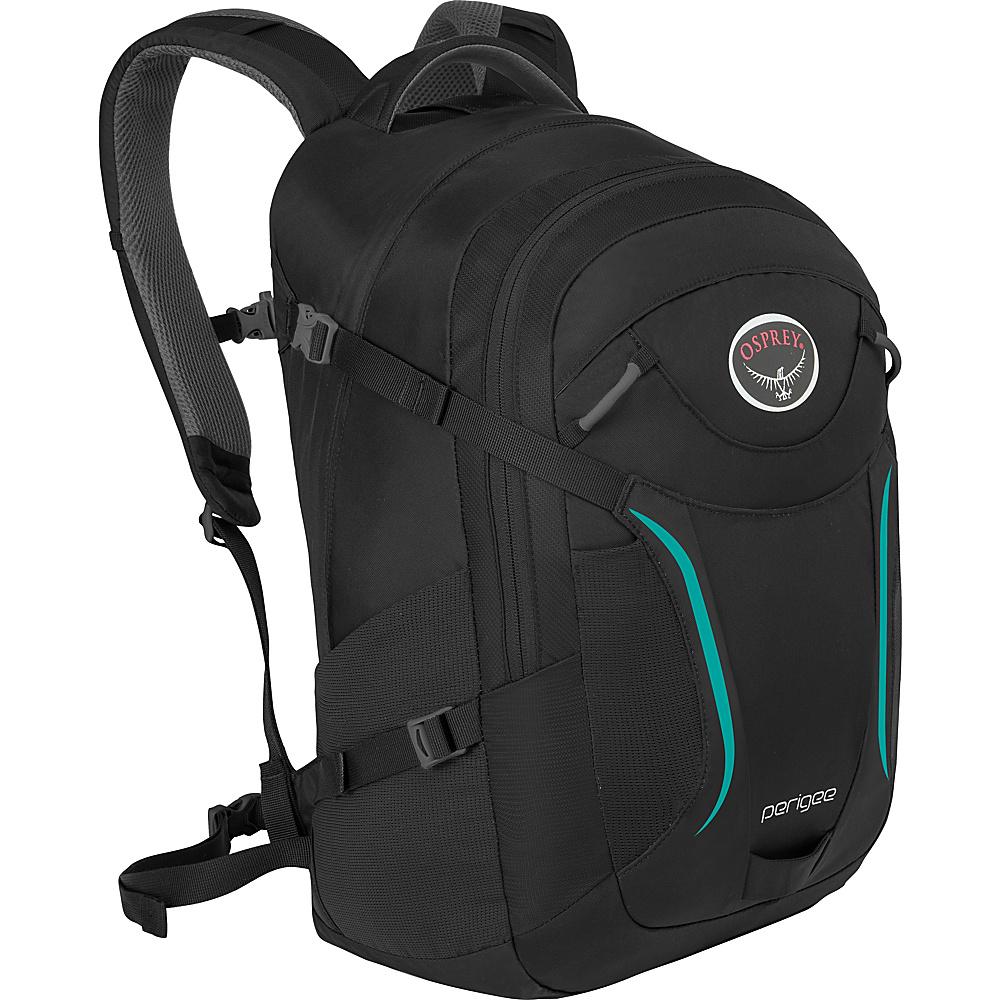 Osprey Perigee Laptop Backpack Black Orchid - Osprey Business & Laptop Backpacks - Backpacks, Business & Laptop Backpacks