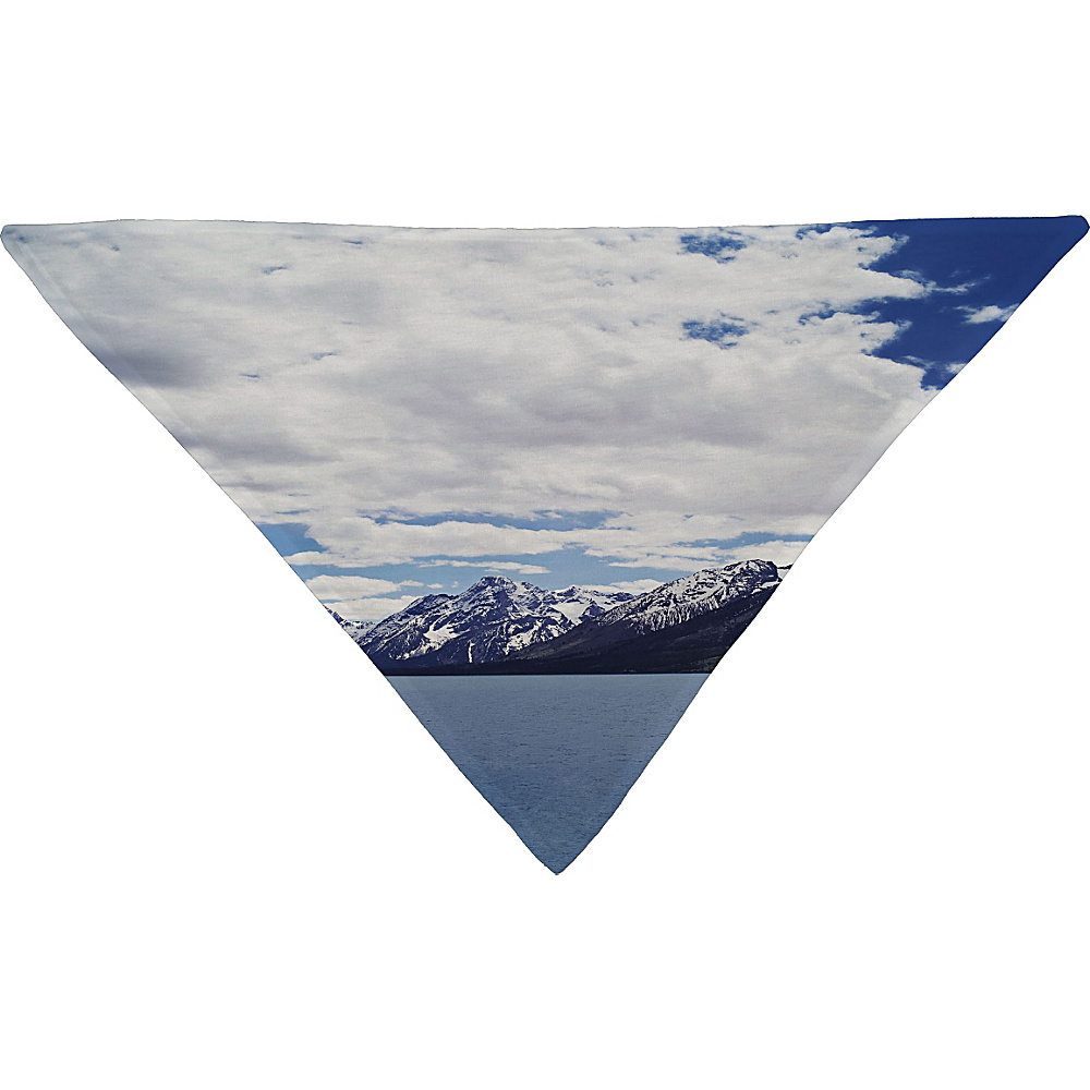 DENY Designs Leah Flores Pet Bandana Ice Blue Grand Tetons x Colter Bay DENY Designs Pet Bags