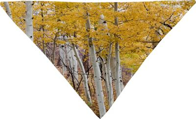 Deny Designs Barbara Sherman Pet Bandana Aspen Yellow - Golden Aspens - Deny Designs Pet Bags