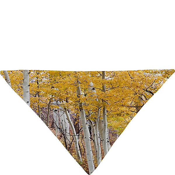 Deny designs barbara sherman pet bandana for Deny designs free shipping code