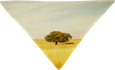 Deny Designs Barbara Sherman Pet Bandana Golden Yellow - Solitary - Deny Designs Pet Bags