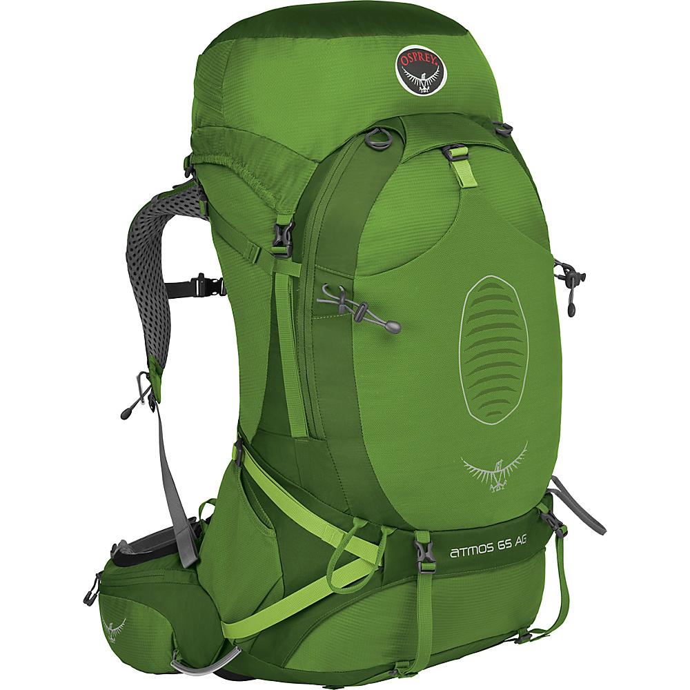 Osprey Atmos AG 65 Backpack Absinthe Green - LG - Osprey Backpacking Packs - Outdoor, Backpacking Packs