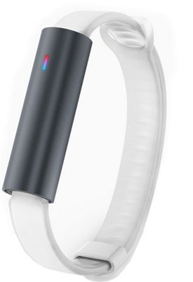 MisFit Ray Fitness Tracker with Sport Band Frost - MisFit Wearable Technology