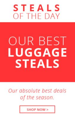 Steals of the Day Luggage!